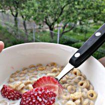 mic dejun rapid